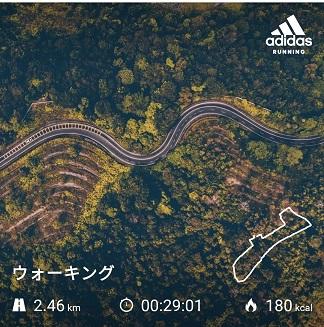 f:id:Tanukichi_papa:20200122234645j:plain