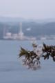 発電所と桜。 セージテキな意図はありませんよ!www