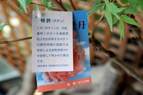 f:id:Tatsuriki:20150112160840j:image