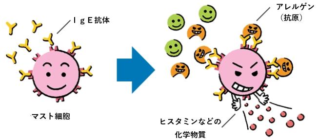 f:id:TatsuyaYokohori:20210224141518p:plain
