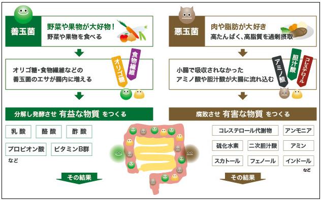 f:id:TatsuyaYokohori:20210426223102p:plain