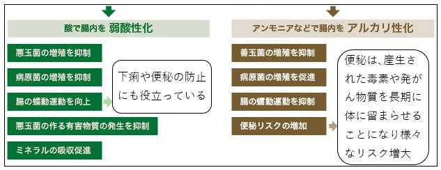 f:id:TatsuyaYokohori:20210426223431p:plain