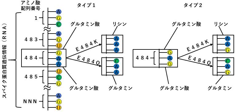 f:id:TatsuyaYokohori:20210430003749p:plain