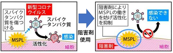f:id:TatsuyaYokohori:20210512215720p:plain