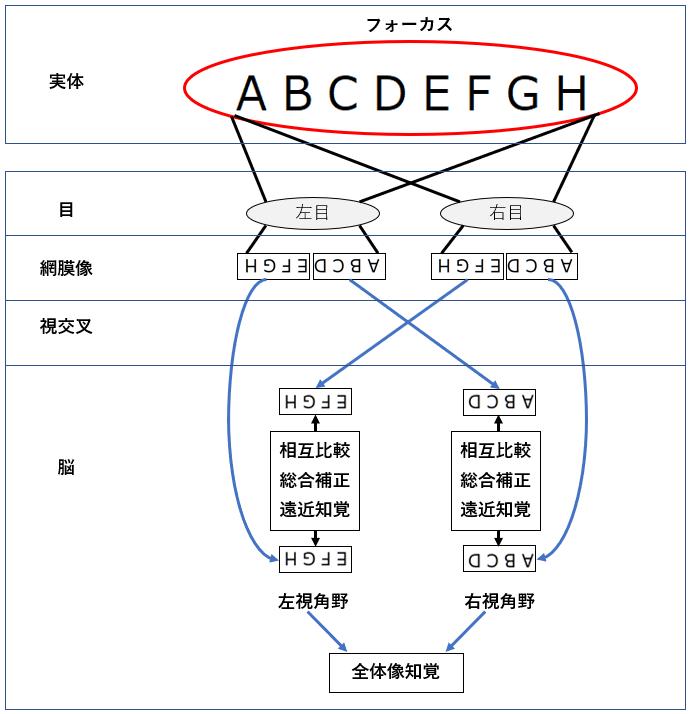 f:id:TatsuyaYokohori:20210924141530p:plain