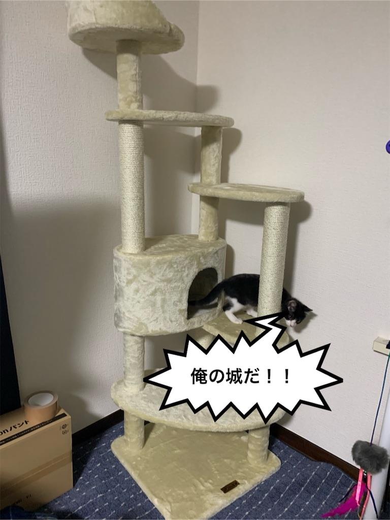 f:id:Tatsuyang:20191211175932j:image