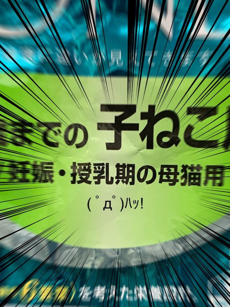 f:id:Tatsuyang:20200220133233j:image