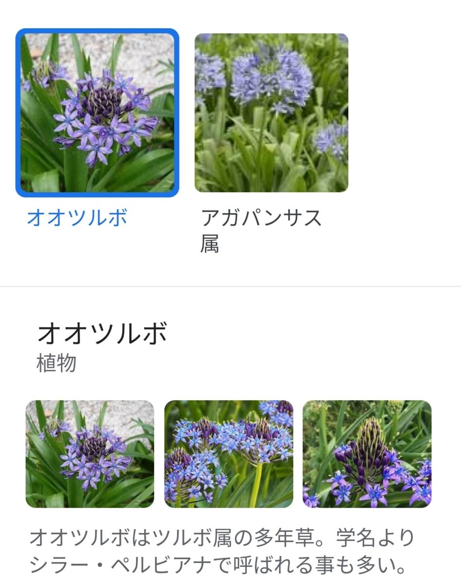 f:id:Tekubura:20210418180009j:plain