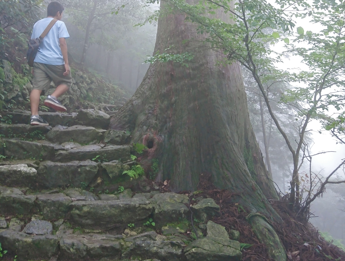 Rugged stairs