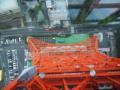 [真下写真][東京タワー]P9173956.JPG