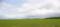「蕎麦の平原」新芽が吹いた蕎麦畑 @幌加内町