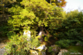 [京都][文化財][鹿苑寺]鹿苑寺 竜門滝