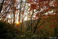 [北海道]山間の日没