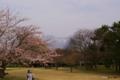 [北海道][花][桜][駒ヶ岳]駒ヶ岳と桜II