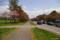 二十間道路桜並木 VIII