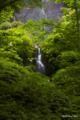 [東北][奥入瀬]岩菅の滝