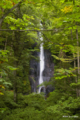 [東北][奥入瀬]白布の滝