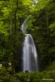 [東北][奥入瀬]雲井の滝 III