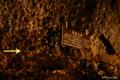 [山梨県][青木ヶ原樹海][西湖コウモリ穴]西湖コウモリ穴 珪藻土線