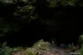 [山梨県][青木ヶ原樹海]竜宮洞穴 III