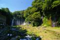 [静岡県]白糸の滝 IV