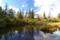 神仙沼湿原 III
