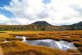 [北海道][ニセコ]神仙沼湿原 V チセヌプリを望む