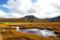 神仙沼湿原 V チセヌプリを望む