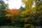 香雪園の紅葉 I