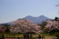 [北海道][花][桜][駒ヶ岳][北海道駒ヶ岳]森町 オニウシ公園の桜と北海道駒ヶ岳