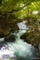[岩手県][龍泉洞]龍泉洞前を流れる清水川
