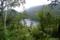 夏の駒止湖 I