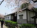 [九州][花][桜][文化財]福岡城址 旧母里太兵衛邸長屋門
