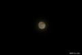 """[空][月]""""こがねのあかり"""""""