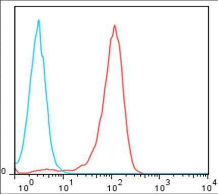 f:id:Terra-Khan:20120225222229j:image:w200:left