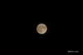 [空][月]春の満月