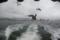 遊覧船を追うカモメの群れ