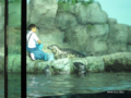 [横浜][八景島シーパラダイス][水族館]