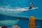 シロイルカに乗って泳ぐ