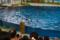 「バイバーイ」 @海の動物たちのショー「ウェリナ アロハ」