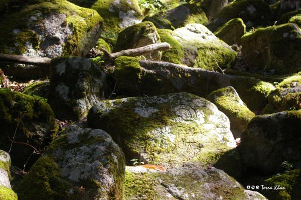 f:id:Terra-Khan:20121008113459j:image:left