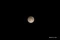 [月][月食]半影月食