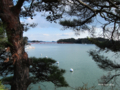 [宮城県][松島]五大堂から出会い橋・福浦島を望む