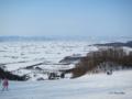 [北海道][冬景色]キトウシ山頂から旭川市街地を望む