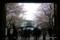 靖国神社の桜 I