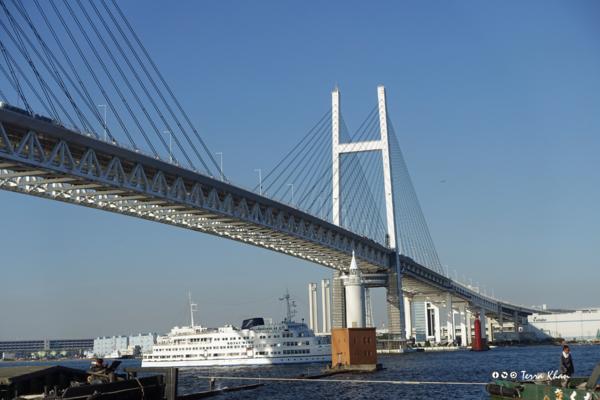 横浜ベイブリッジをくぐる客船