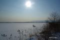 [北海道][冬景色][ウトナイ湖]全面結氷したウトナイ湖