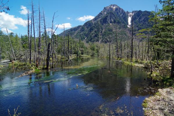 岳沢湿原と六百山
