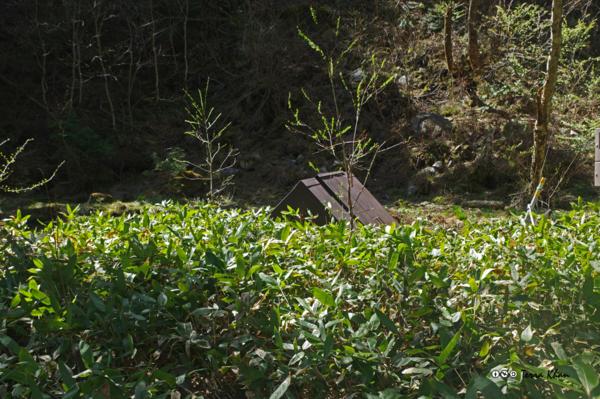 清水川の取水設備