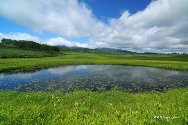 [北海道][雨竜沼湿原]